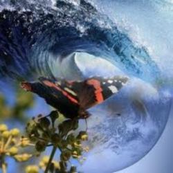 kelebek etkisi harp kaos öne çıkan görsel