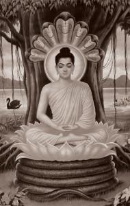 buddhaprotectedbyseven-headedcobra