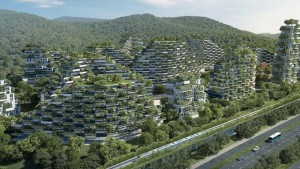 Orman-kent-Çin