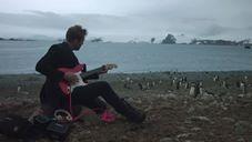 Antarktika'da penguenlere konser