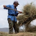bm-tarım