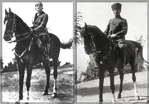 Sakarya İsimli At