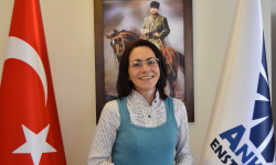 Dr. Filiz GÜRTUNA